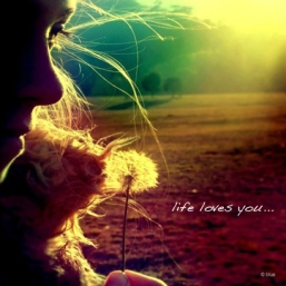 124279-Life-Loves-You